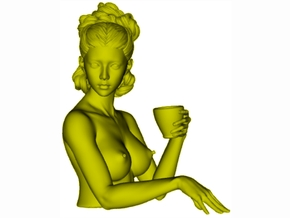1/9 scale sexy topless girl with cup bust in Smooth Fine Detail Plastic