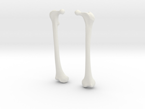 Femur Earrings in White Natural Versatile Plastic