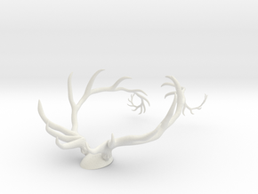 Antler Set w/Backing in White Strong & Flexible