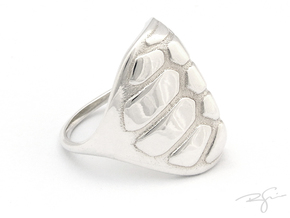 TORTOISE in Polished Silver