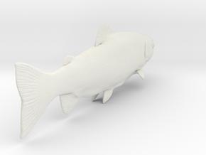 trout1 in White Natural Versatile Plastic