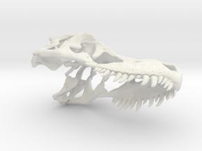 Tyrannosaurus Skull Keychain  in White Strong & Flexible