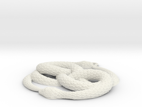3D-Printed AURYN Medallion in White Natural Versatile Plastic