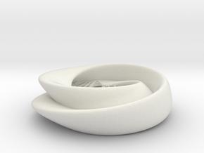 Kleinbottle mathworld figure 8 in White Natural Versatile Plastic