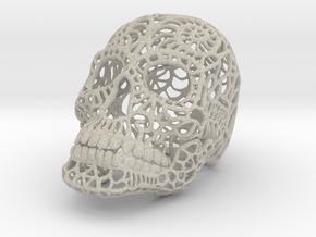 Nautilus Sugar Skull - Large in Natural Sandstone