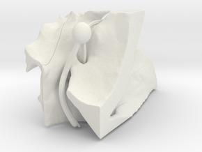 ppfhalvedretry in White Natural Versatile Plastic