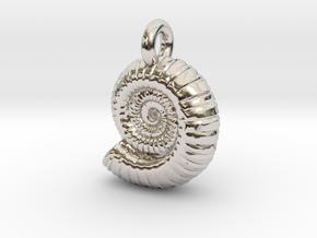 Ammonite Earing/Pendant  in Platinum
