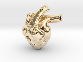 Human Heart in 14K Yellow Gold