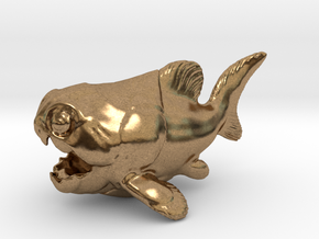 Dunkleosteus Chubbie 1 in Natural Brass