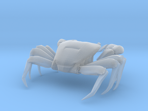 Articulated Crab (Pachygrapsus crassipes) in Smooth Fine Detail Plastic