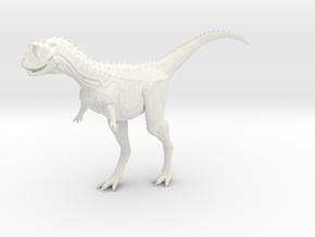 Carnotaurus 1/72 - Standing in White Natural Versatile Plastic