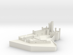 Blackrock Castle Observatory, Cork Ireland in White Natural Versatile Plastic