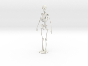 Skeleton new in White Natural Versatile Plastic