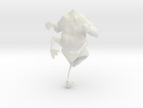 evolutionFrog_3 in White Strong & Flexible