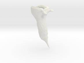 It's a Fish in White Natural Versatile Plastic