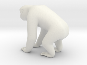 Silvery Gibbon in White Natural Versatile Plastic