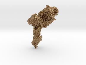 Hemagglutinin Antibody in Natural Brass