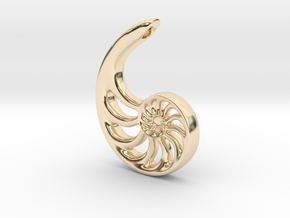 Nautilus Spiral: 4cm in 14K Yellow Gold
