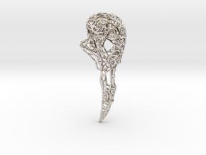 Bird Skull Filigree: 7cm in Platinum