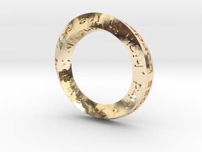 Mobius Fly Model 3cm in 14K Yellow Gold