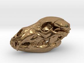Bear Skull. 5cm in Natural Brass: Large