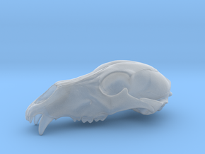Bear Skull. WT-07. 6cm.  in Smooth Fine Detail Plastic