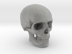 18mm 0.7in Human Skull Crane Schädel че́реп in Metallic Plastic