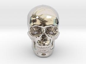 25mm 1in Human Skull Crane Schädel че́реп in Platinum