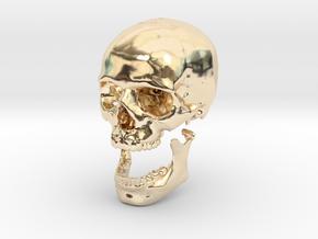 42mm 1.65in Human Skull Crane Schädel че́реп in 14K Yellow Gold
