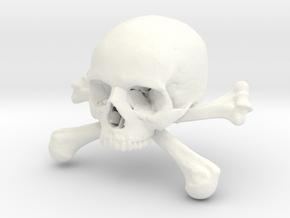 58mm 2.28in Skull & Bones Skull Crane Schädel in White Strong & Flexible Polished