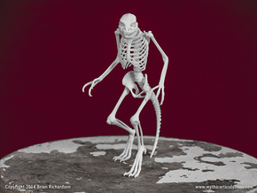 Lizard Man Skeleton in White Strong & Flexible