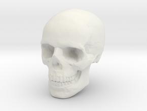 8mm 0.3in Human Skull for earring in White Natural Versatile Plastic