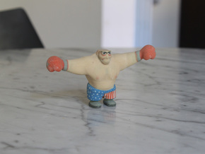 Boxer in Full Color Sandstone