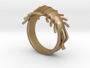 Millipede Ring 17mm in Matte Gold Steel