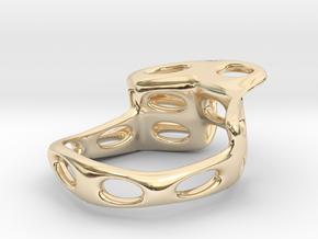 S4r021s7 GenusReticulum in 14K Yellow Gold