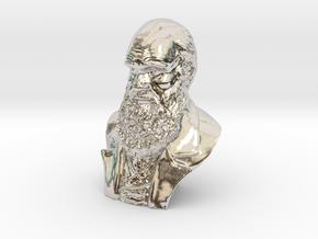 "Charles Darwin 3"" Bust in Platinum"