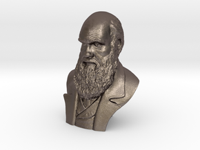 "Charles Darwin 2"" Bust in Polished Bronzed Silver Steel"
