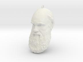 """Charles Darwin 6"""" Head Decimated in White Natural Versatile Plastic"""