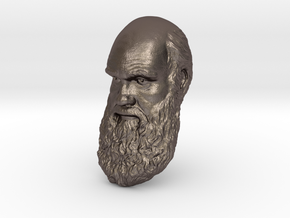 "Charles Darwin 12"" Head Wall Mount in Polished Bronzed Silver Steel"