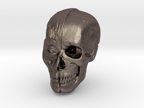 Anatomy Head in Polished Bronzed Silver Steel