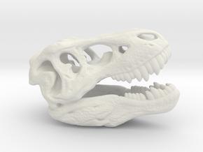 Tyrannosaurus rex skull - 40mm in White Natural Versatile Plastic