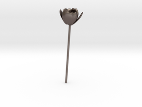 Tulip in Polished Bronzed Silver Steel