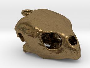 Loggerhead Sea Turtle Skull in Natural Bronze