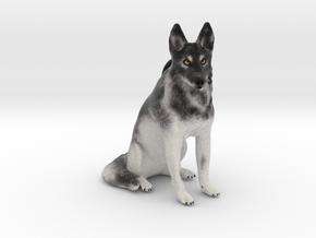 Custom Dog Ornament - Koi in Full Color Sandstone