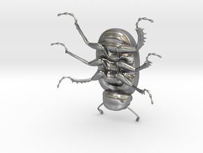 Dung Beetle in Natural Silver