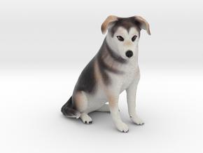 Custom Dog Figurine - Jinx in Full Color Sandstone