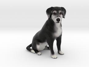 Custom Dog Figurine - Tippy in Full Color Sandstone