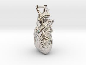 Anatomical Heart Pendant in Platinum