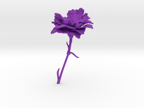 Carnation in Purple Processed Versatile Plastic