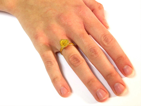 Gold Mine Ring - UK M (inside diameter 16.71mm) in Polished Gold Steel